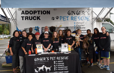 Ginger's Pet Adoption team visits Theorem in Kenmore